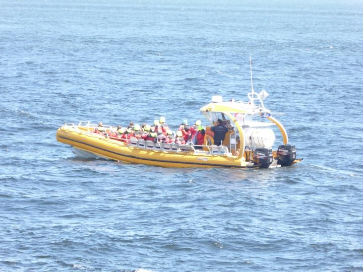 Tadoussac: De place-to-be om walvissen tespotten