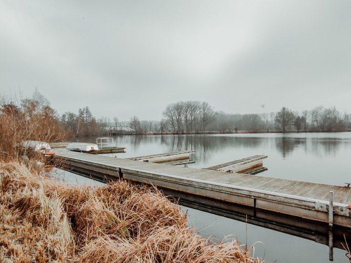 Waanzinnig Waasland: Een verborgen oase op de parking van 'tStad.
